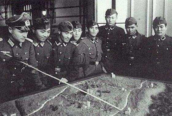 國民黨軍隊中的德國軍事顧問